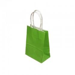 Lot de 12 sacs papier kraft uni vert anis 21x11x27cm - 9442
