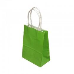 Lot de 12 sacs kraft uni couleur vert anis 26x12x33cm - 9452